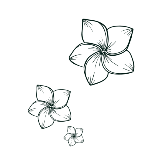 Gravure fleur ananas victoria réunion