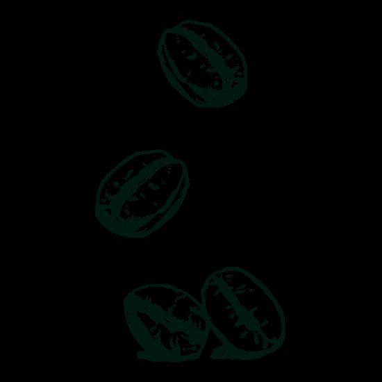 Gravure grains de café Isautier